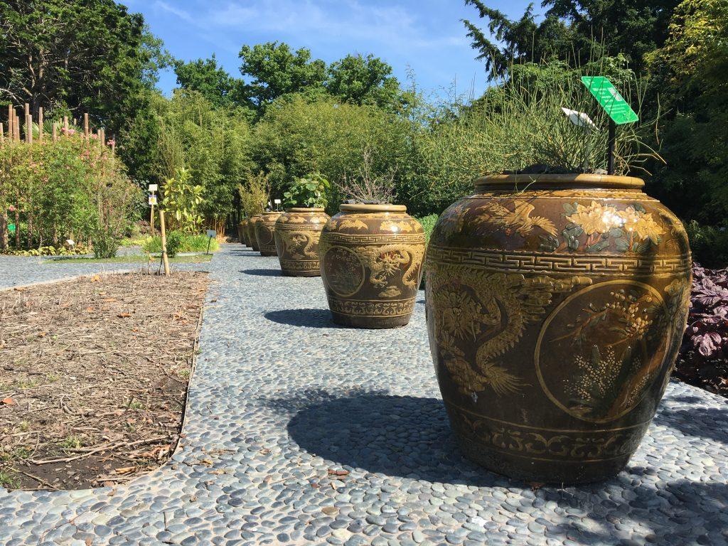 Botanischer Garten Leiden
