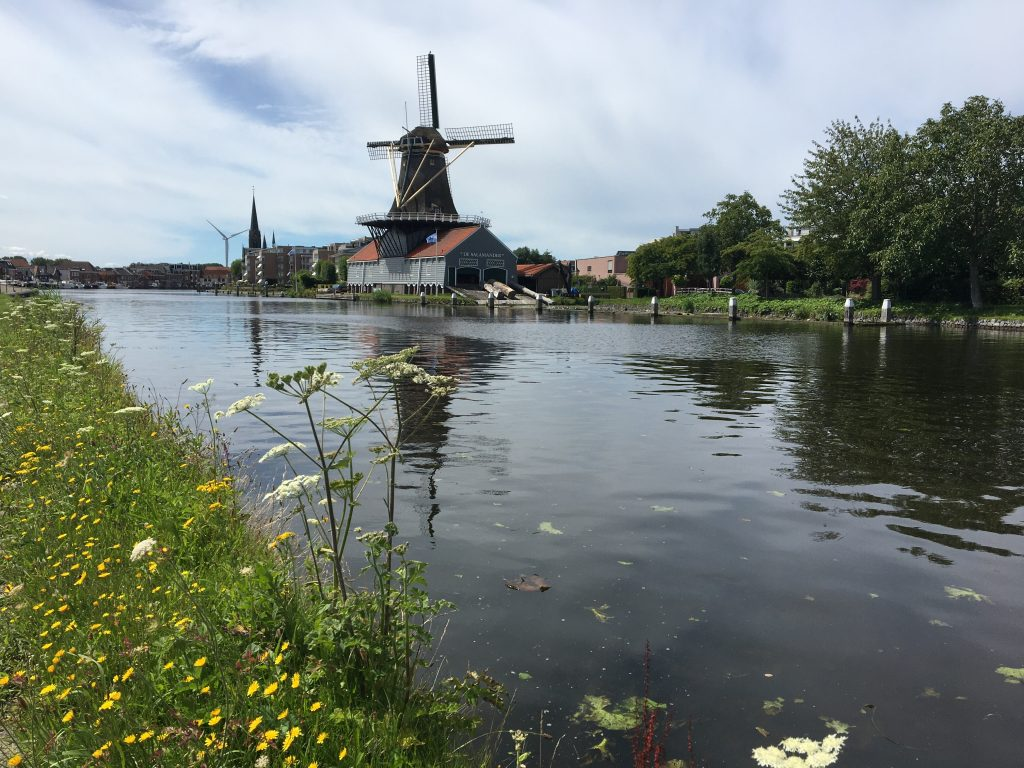 Salamander Windmühle auf unserer Radtour durch Südholland
