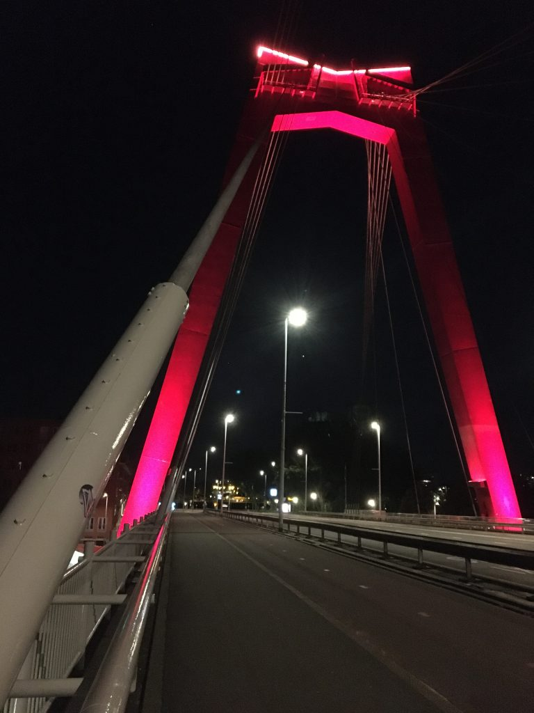 Radtour durch Südholland auf der Willemsbrücke