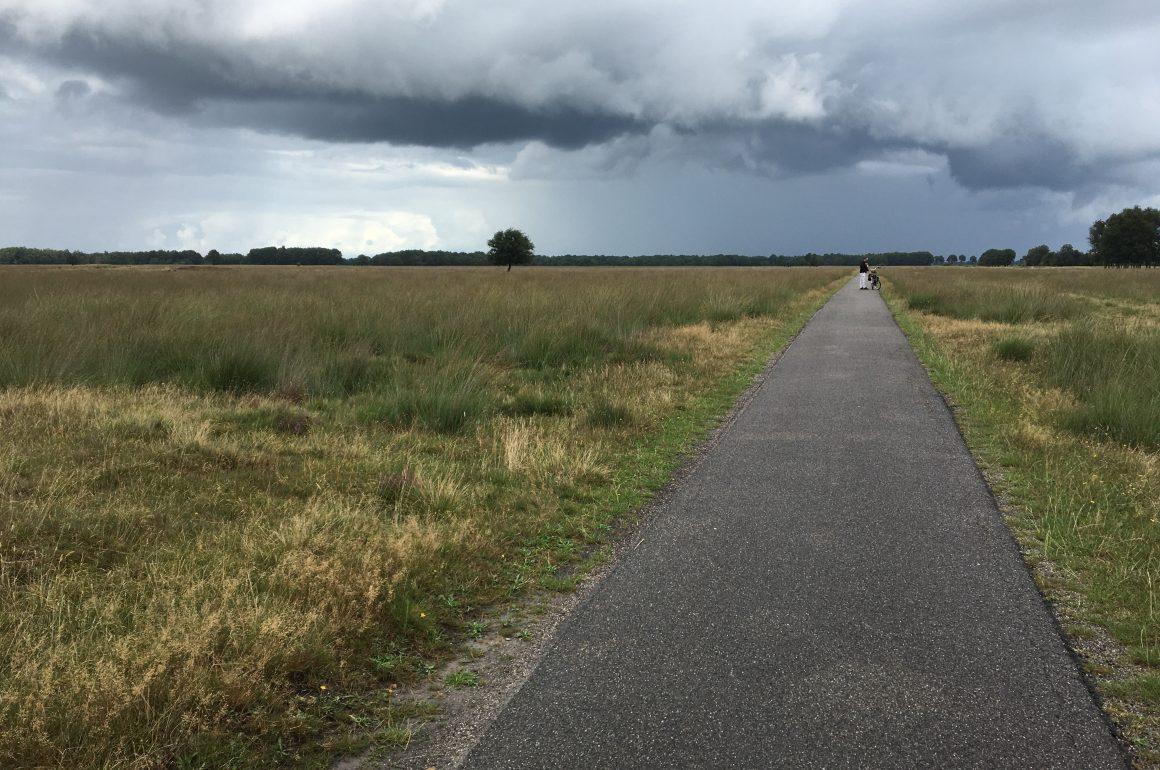 Drenthe Heidelandschaft
