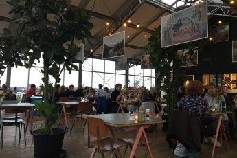 titelbild cafés in haarlem