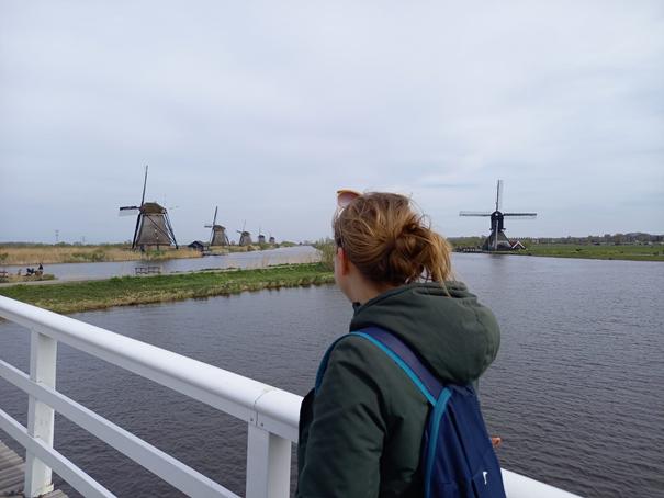 Am Kinderdijk bei Dordrecht